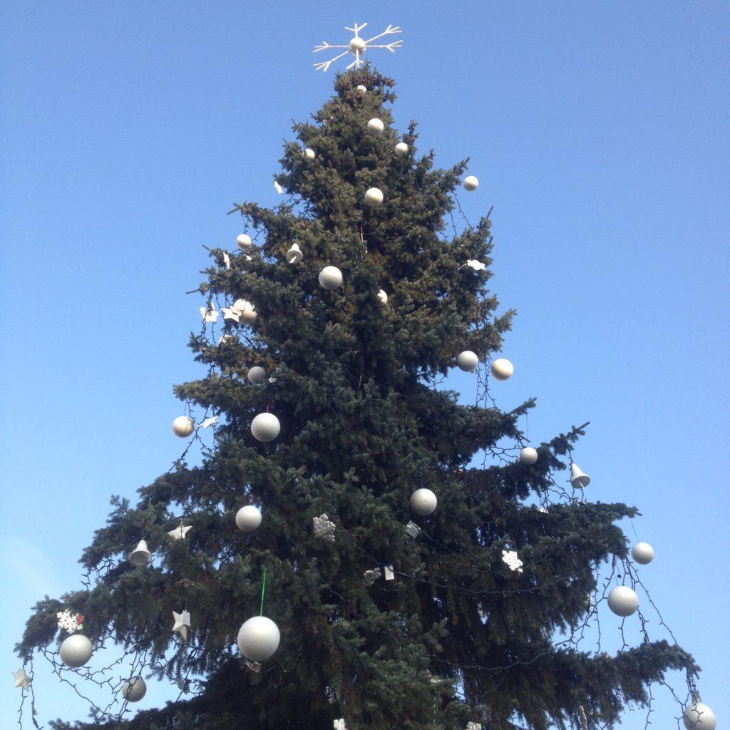 Bratislava Slovakia Christmas time Christmas tree