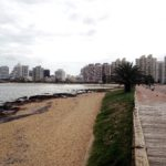Why you should go to Punta del Este, Uruguay