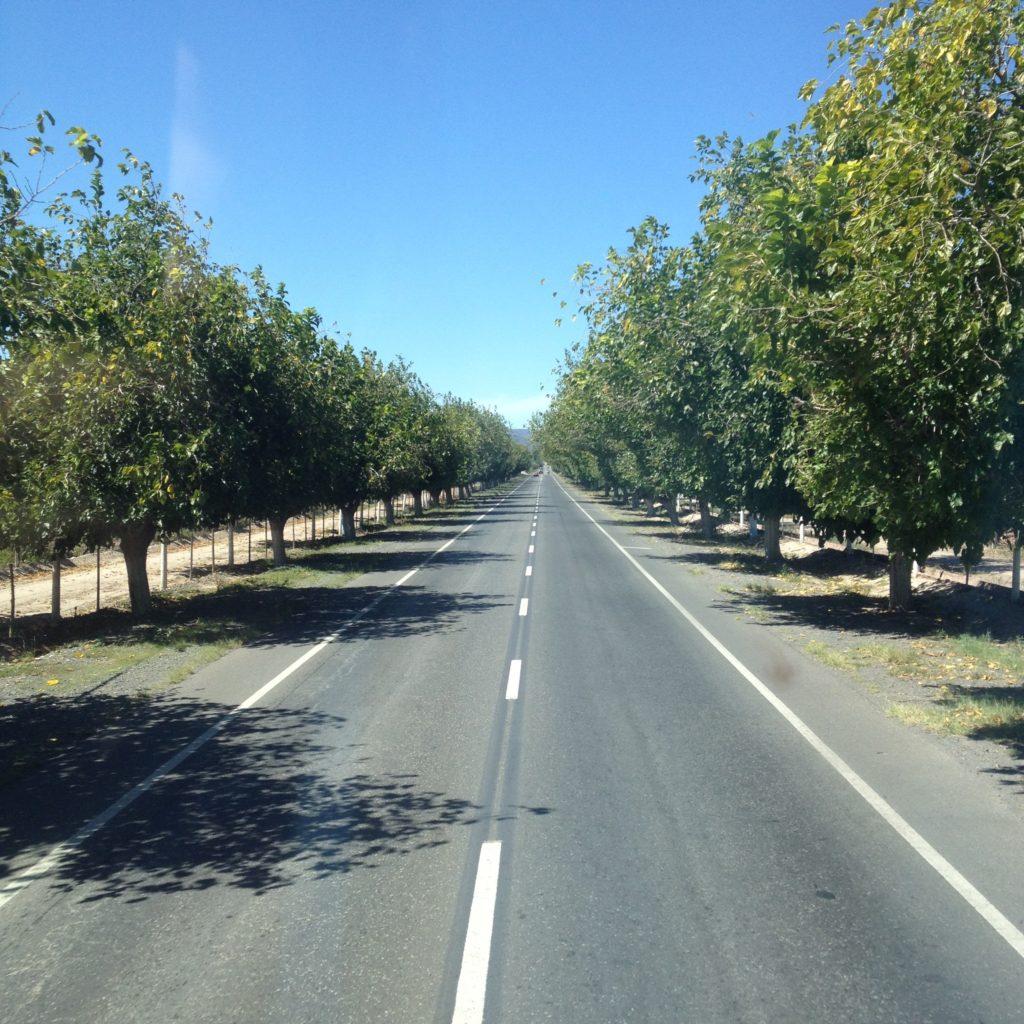road Mendoza to La Rioja Argentina