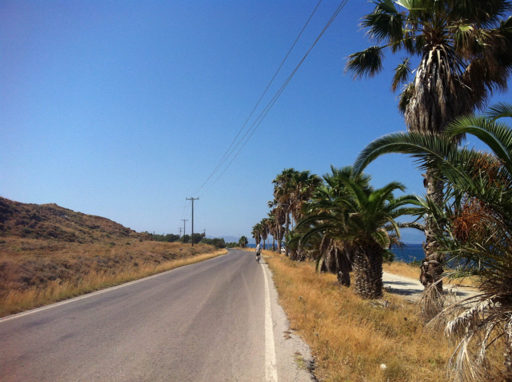 road island Kos Greece palm trees rent a bike
