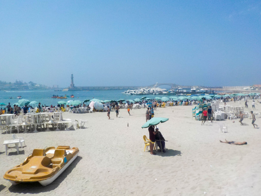 Montaza Palace Gardens palm trees Alexandria Egypt Africa beach Mediterranean Sea