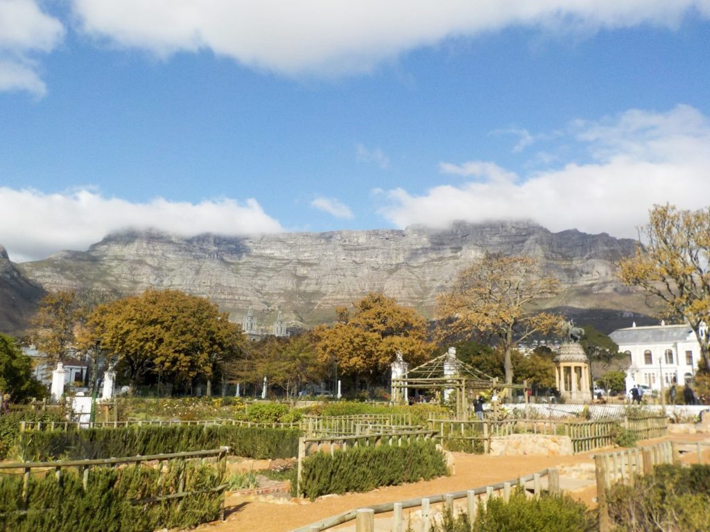 Table Mountain Cape Town South Africa Company gardens