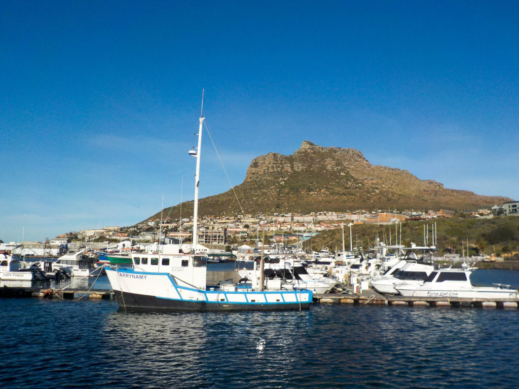 Hout Bay Cape Town South Africa marina boats Atlantic Ocean