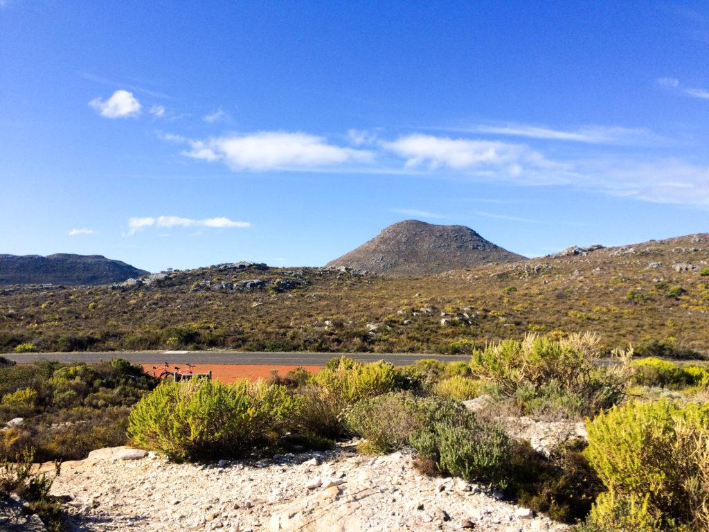 Cape Peninsula Nature Reserve South Africa