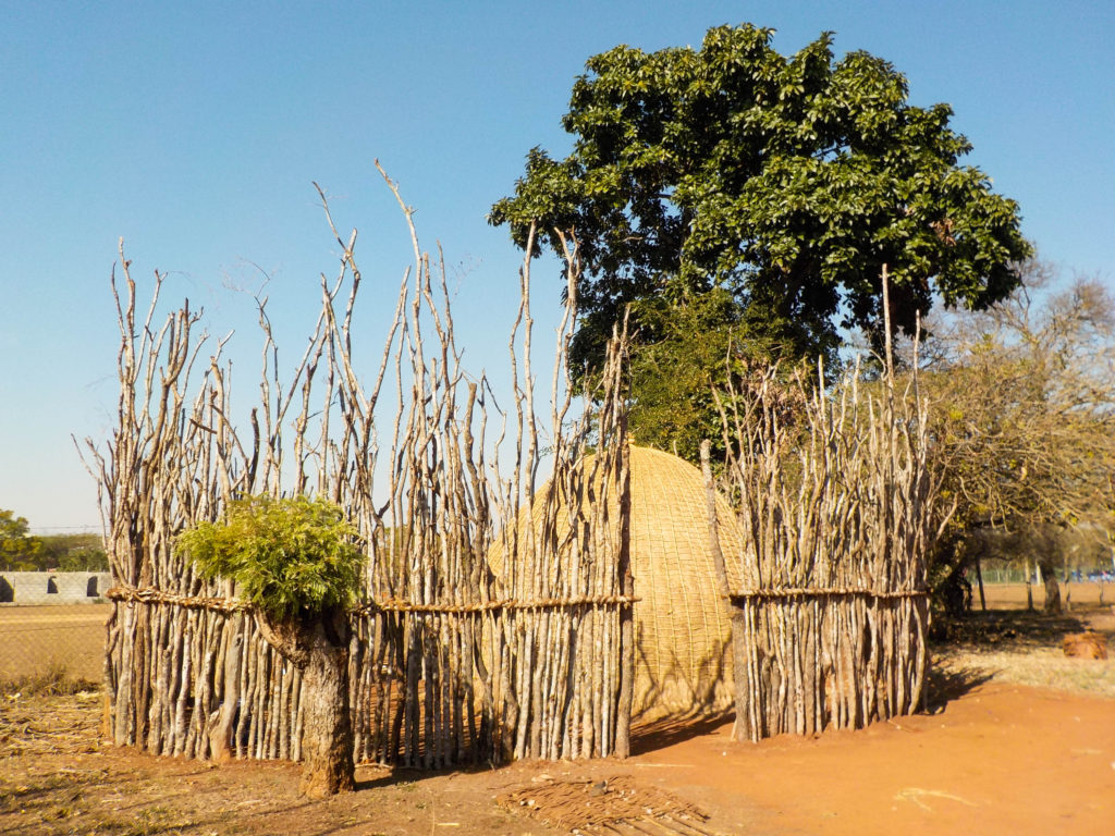 traditional houses Lombaba Swaziland Africa