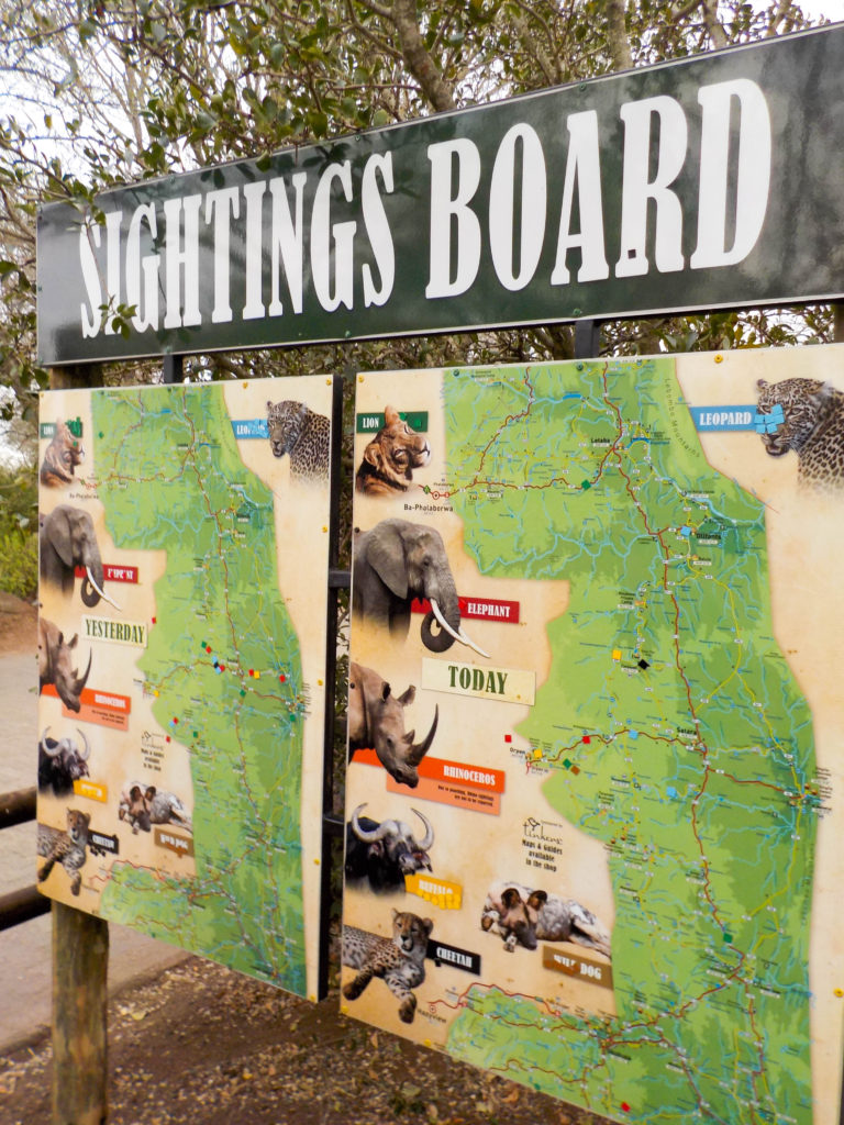 Kruger National Park South Africa safari sightings board