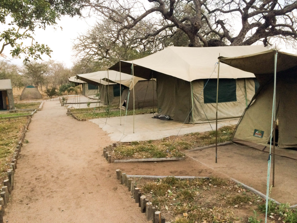 Andover Nature Reserve Kruger National Park South Africa tent camp
