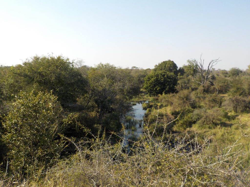 Kruger National Park South Africa safari river