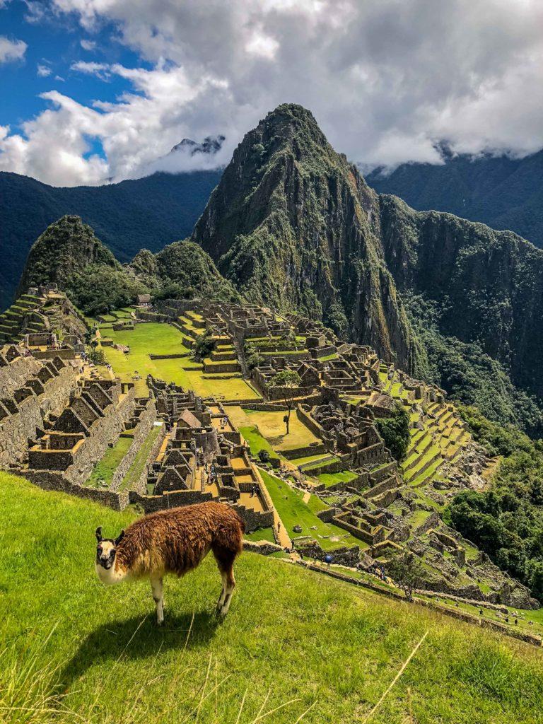 Machu Picchu Cusco Peru South America llama