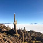 Visting Uyuni & Reserva Nacional de Fauna Andina Eduardo Avaroa – part 1