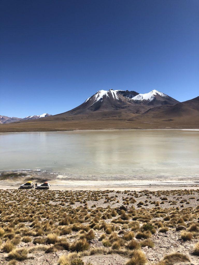 Laguna Canapa Reserva Nacional de Fauna Andina Eduardo Avaroa Uyuni Bolivia South America