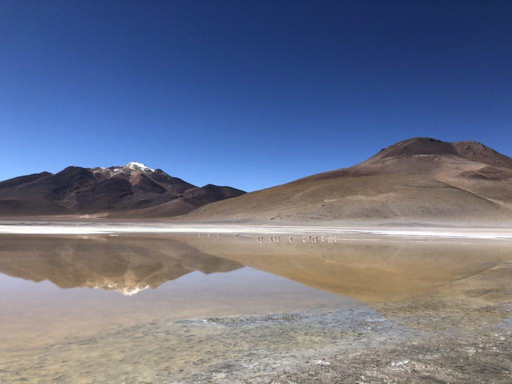 Laguna Ramatias Reserva Nacional de Fauna Andina Eduardo Avaroa Uyuni Bolivia South America