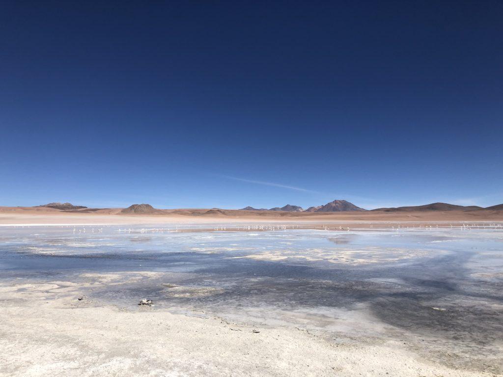 Laguna Ramaditas Reserva Nacional de Fauna Andina Eduardo Avaroa Uyuni Bolivia South America