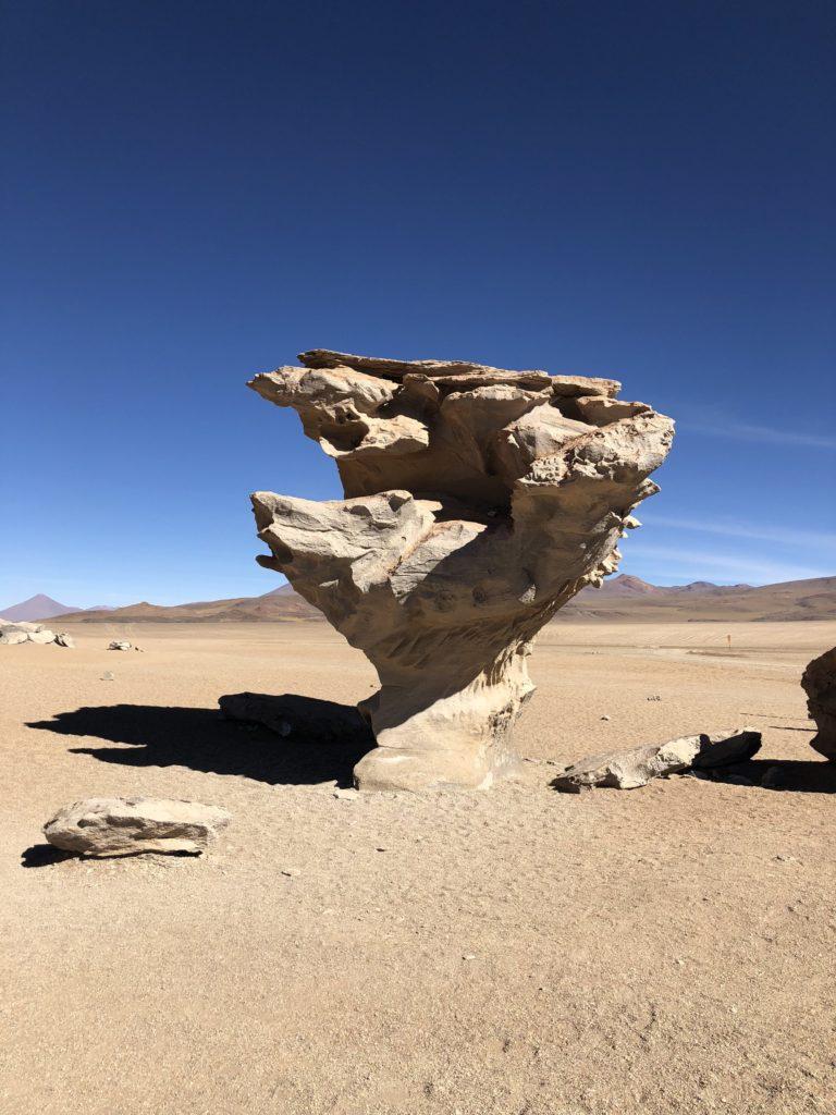 stone tree Reserva Nacional de Fauna Andina Eduardo Avaroa Uyuni Bolivia South America