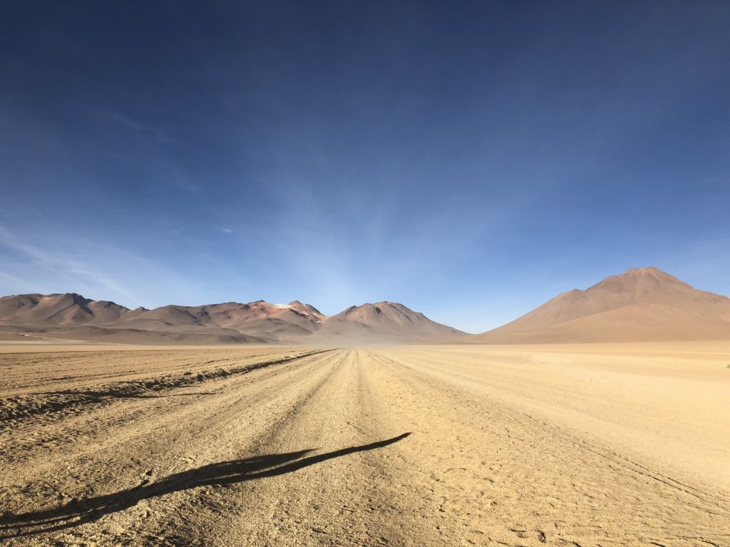 Desierto Salvador Dali Reserva Nacional de Fauna Andina Eduardo Avaroa Uyuni Bolivia South America