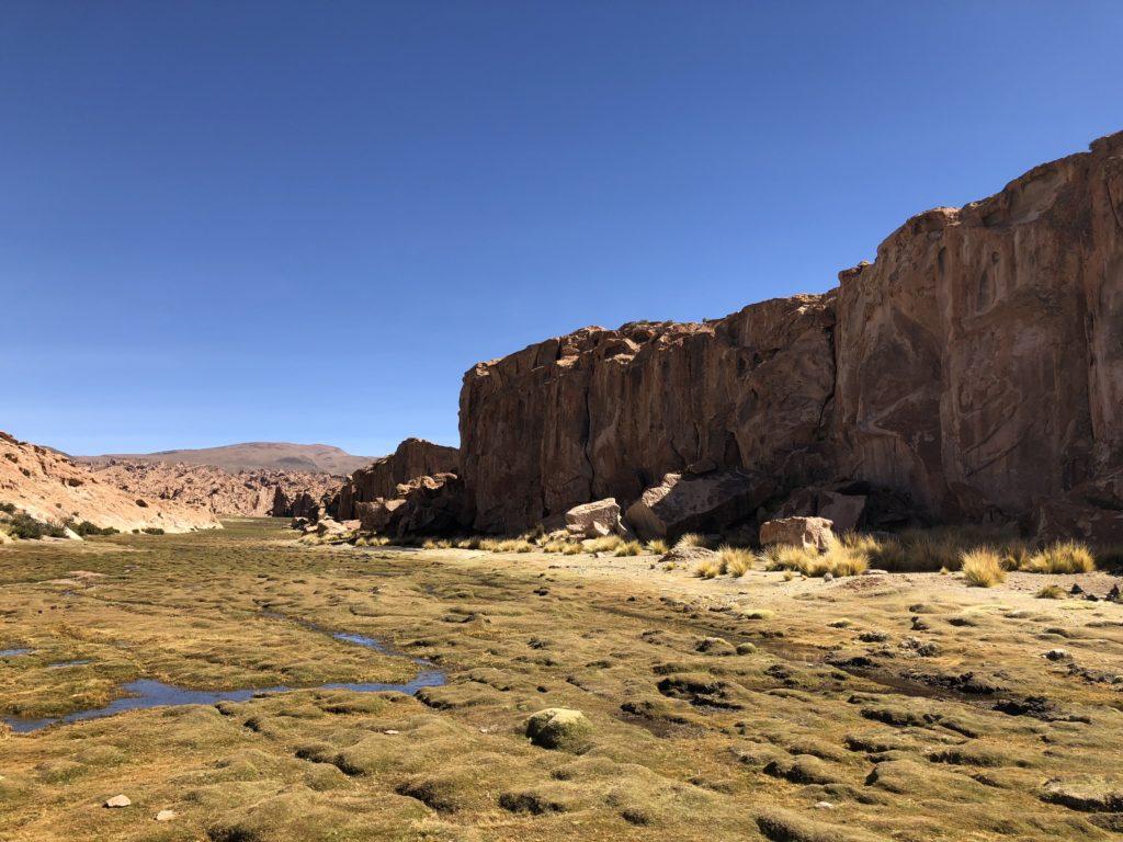 Laguna Negra Reserva Nacional de Fauna Andina Eduardo Avaroa Uyuni Bolivia South America