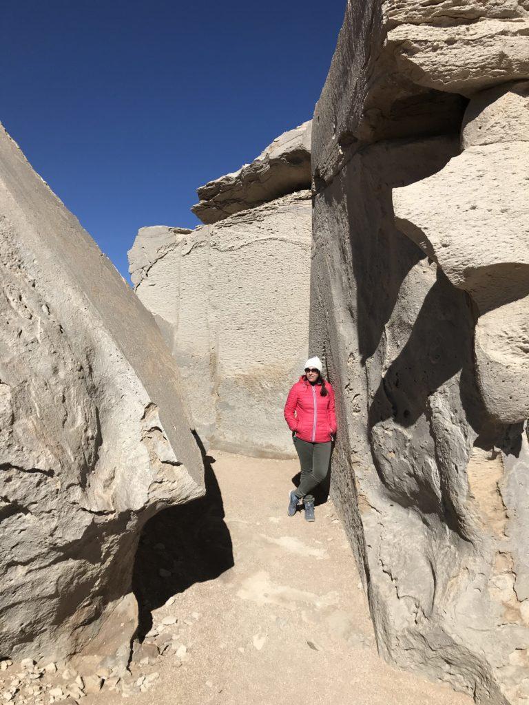 stone tree Reserva Nacional de Fauna Andina Eduardo Avaroa Uyuni Bolivia South America Vanja Vodenik