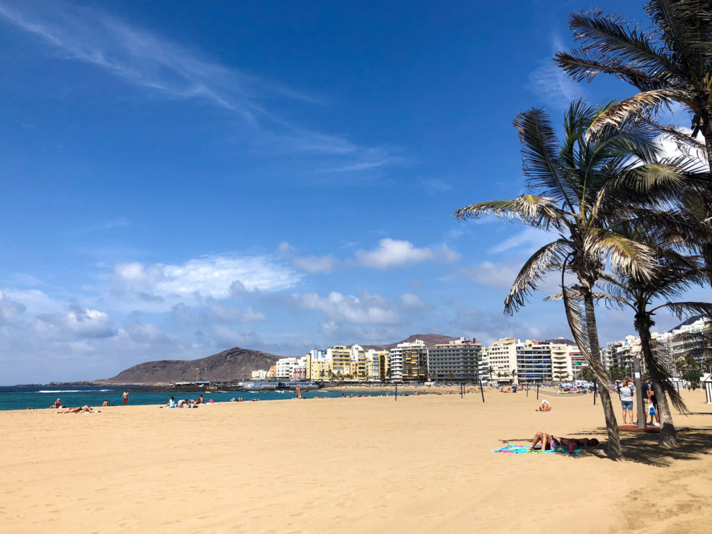 Gran Canaria Canary Islands Spain Las Palmas beach palm trees