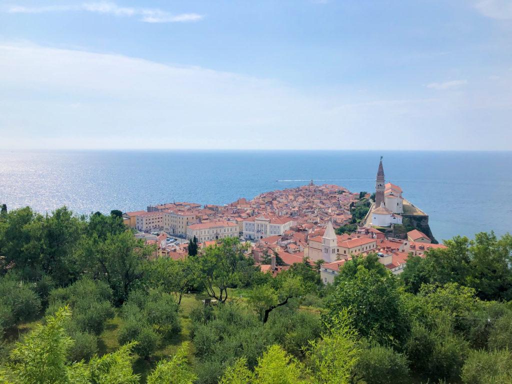 Piran Slovenia Europe