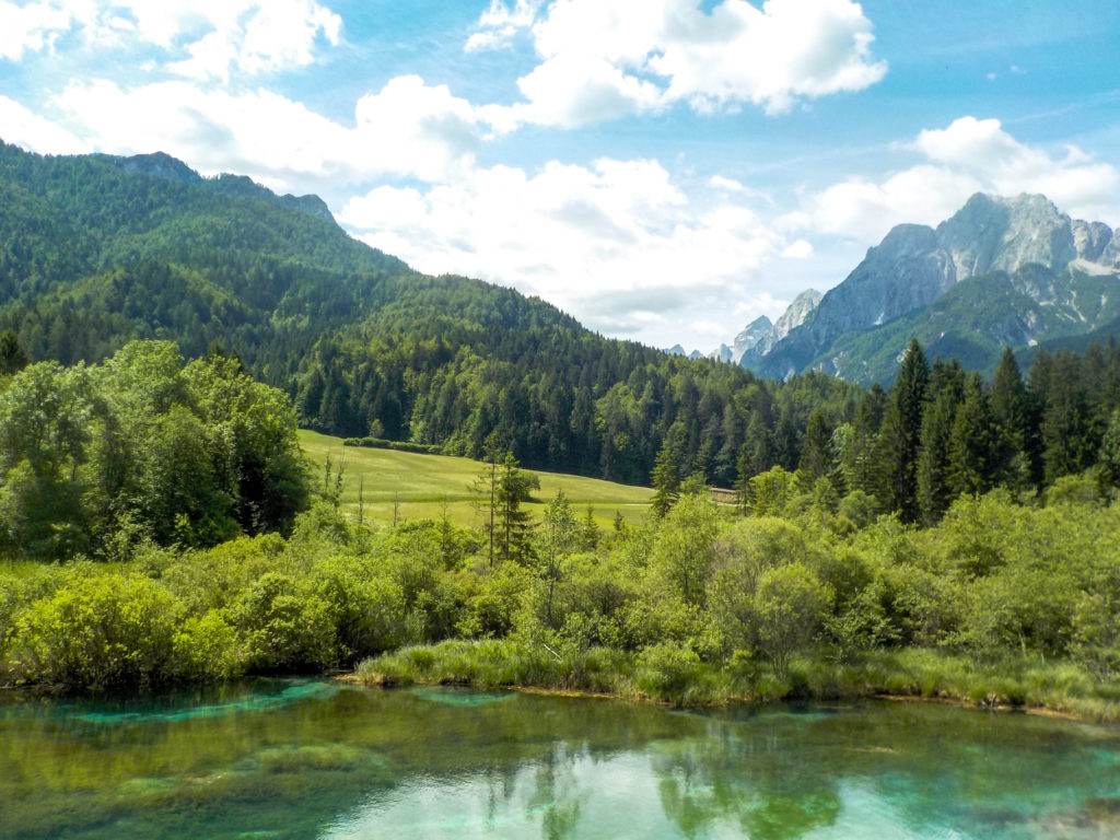 Travel Zelenci spring Triglav National Park Slovenia Europe