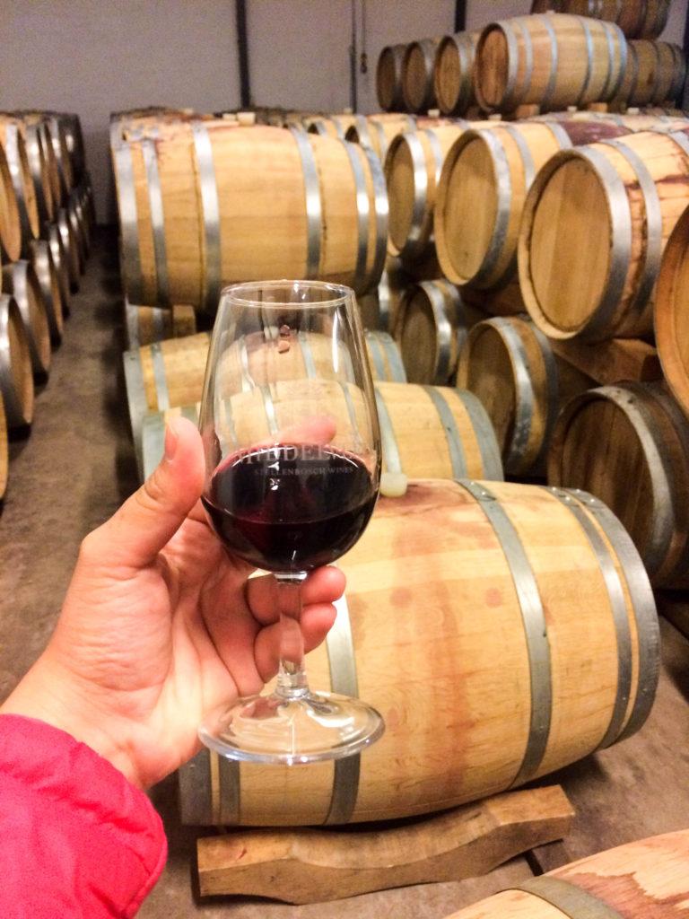 wine tasting Stellenbosch pinotage South Africa