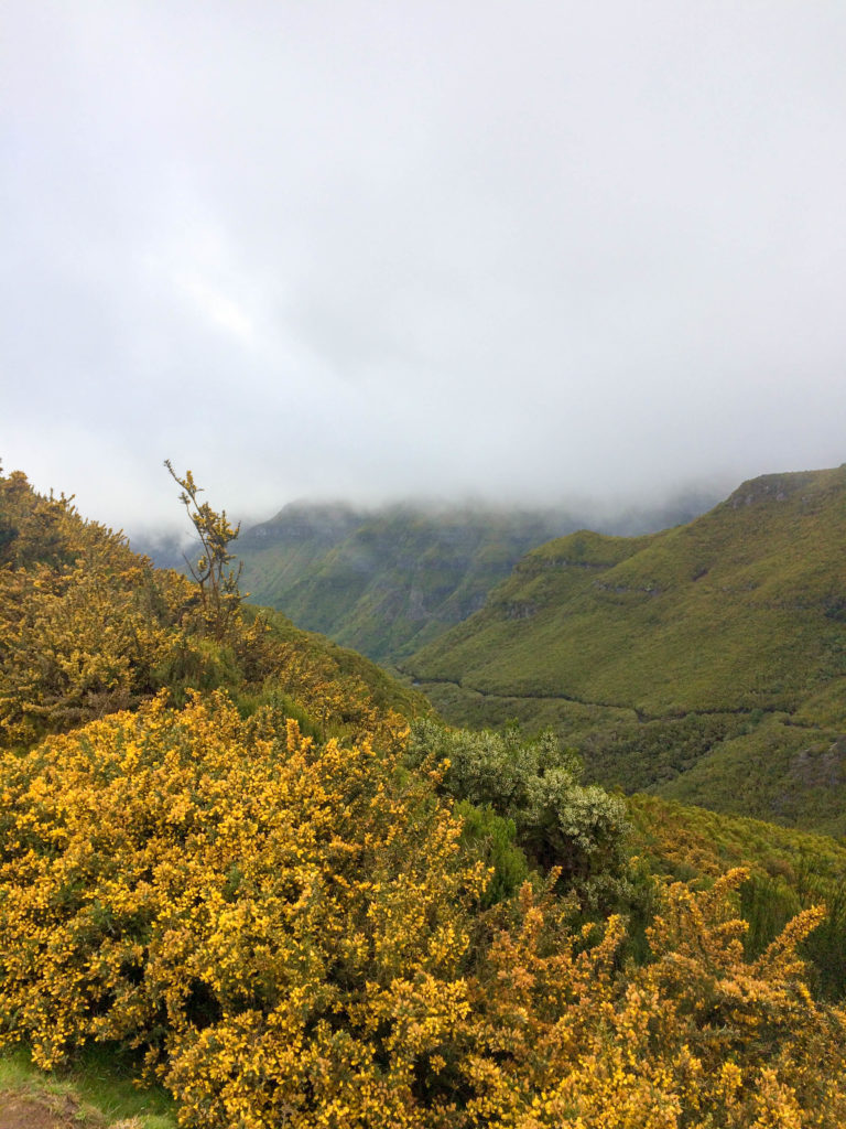 Madeira Portugal Europe island Rabacal bad weather