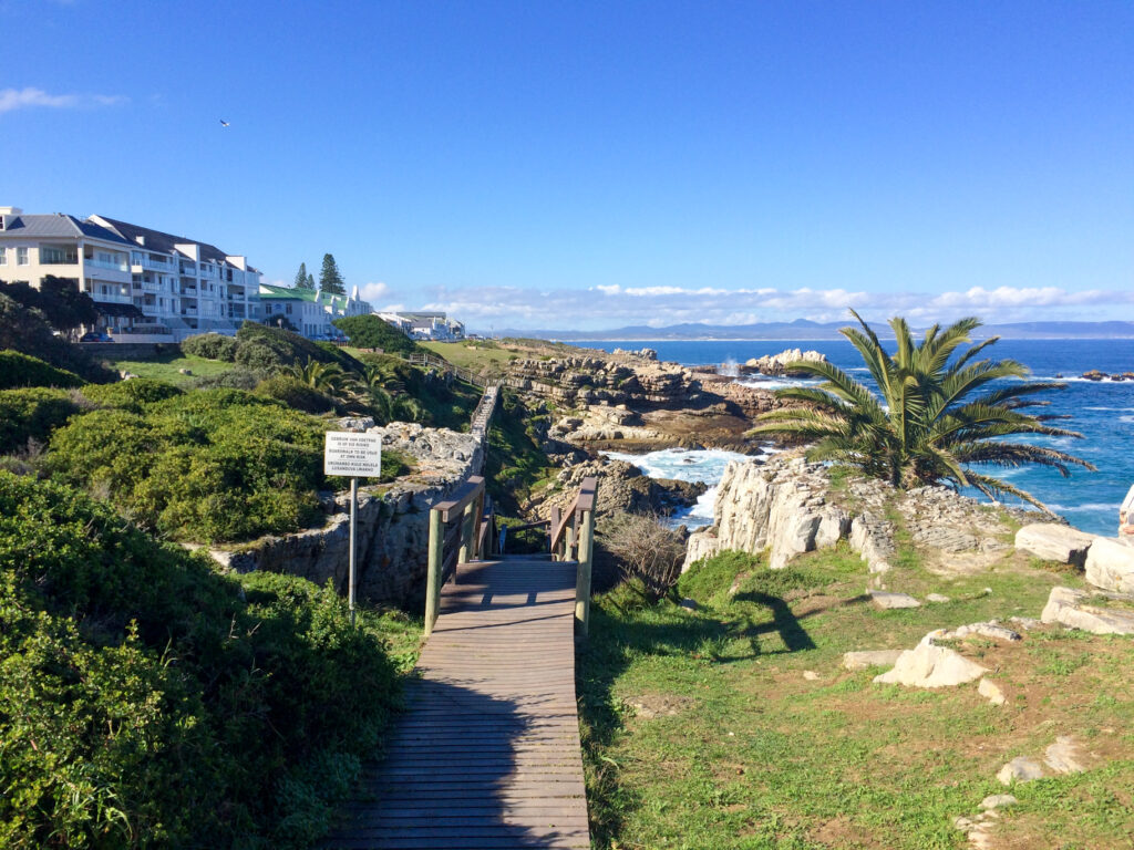 Hermanus South Africa Cliff Path Biodiversity Walk