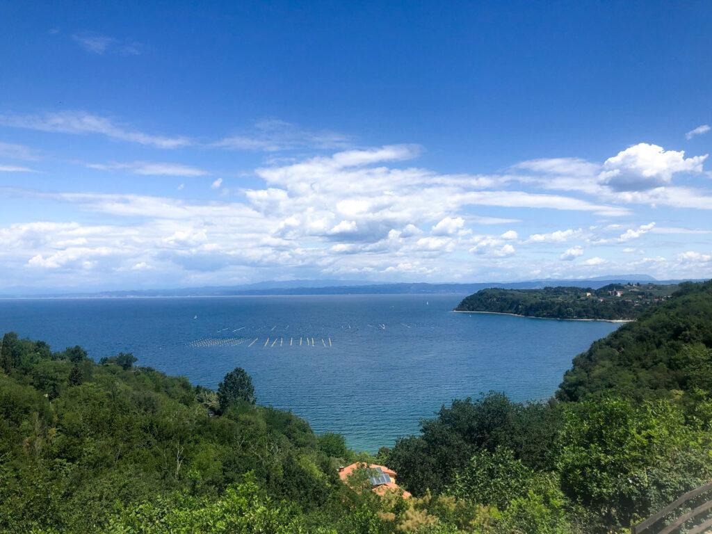 Slovenian Adriatic coast