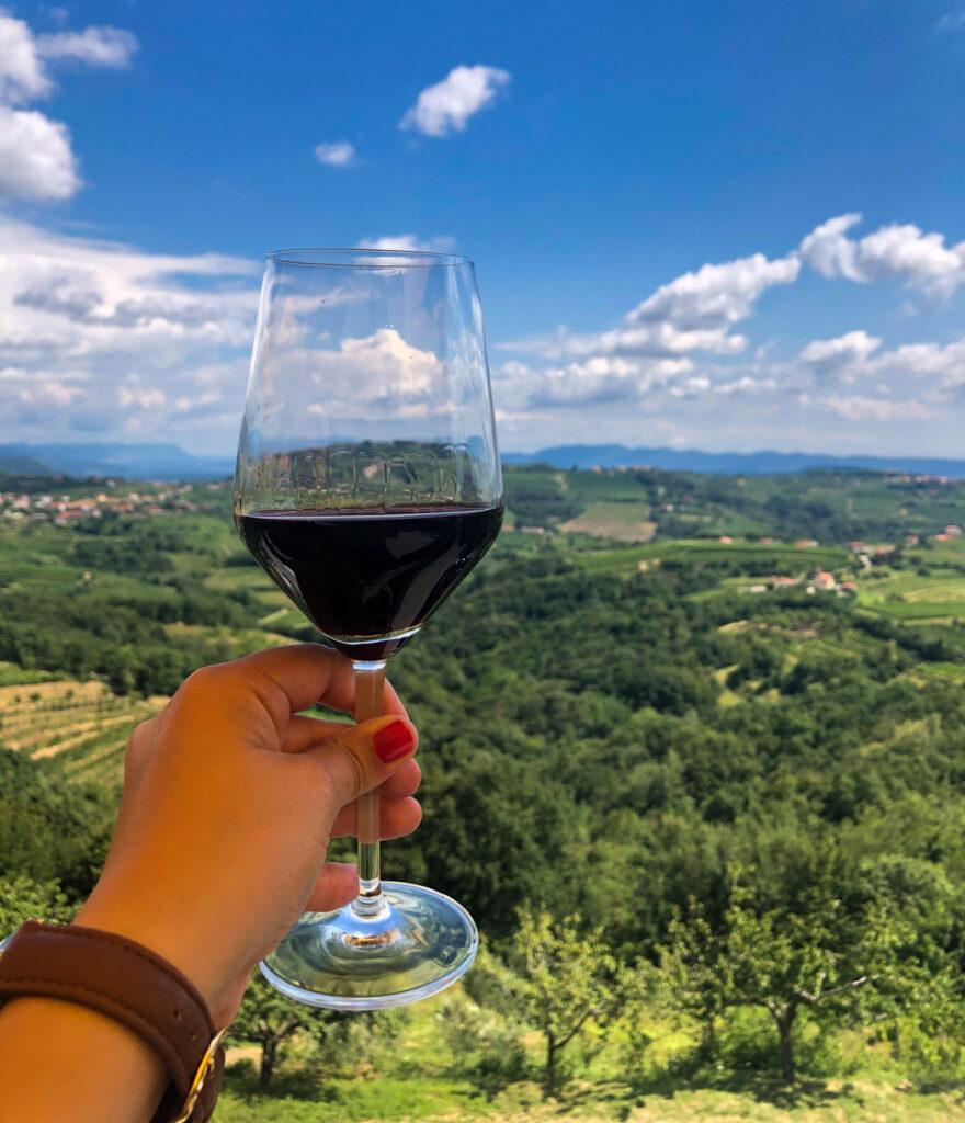 wine Goriška Brda Slovenia Europe