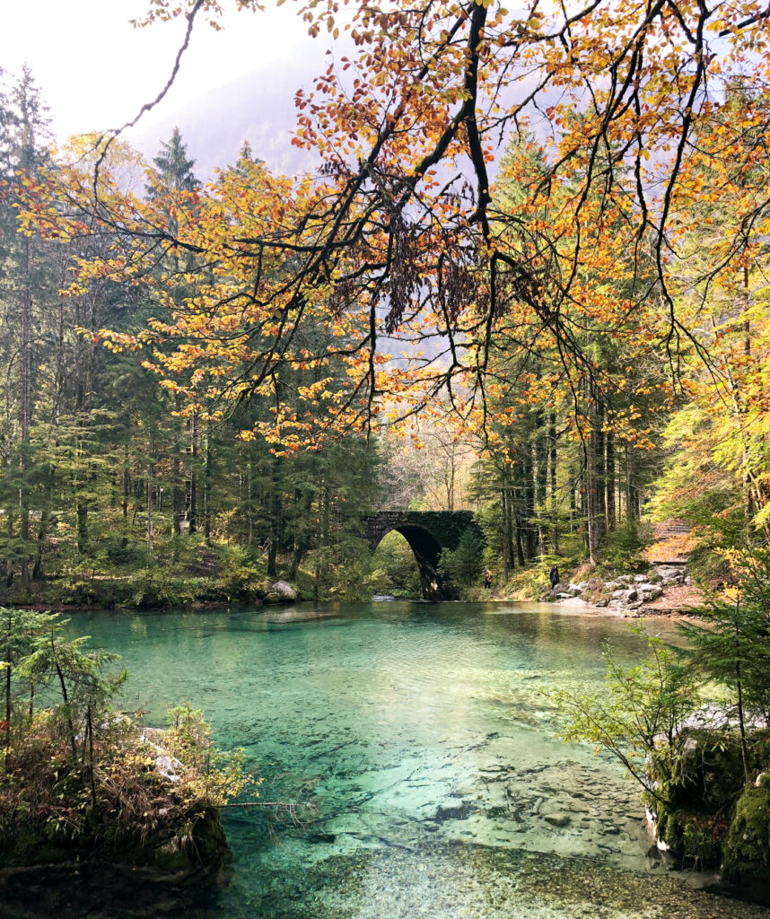 Kamniška Bistrica river source Central Slovenia Region Slovenia Europe
