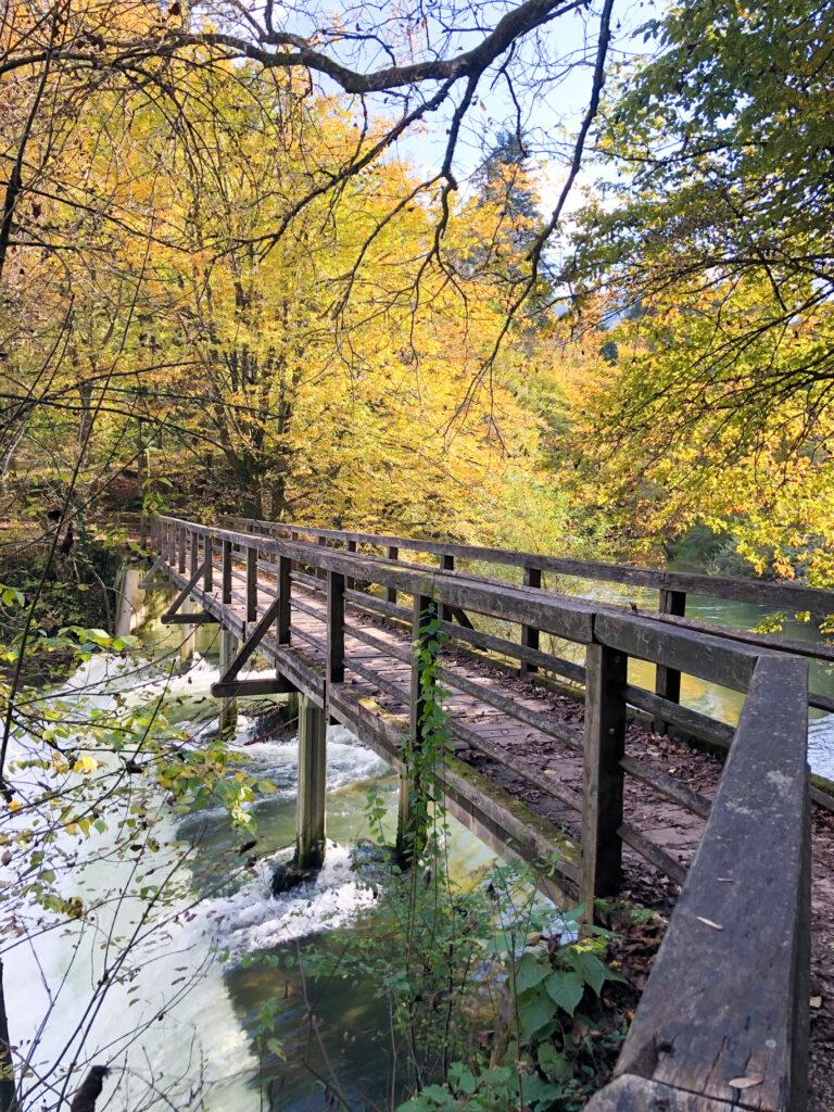 Retovje spring Ljubljanica river Slovenia Europe