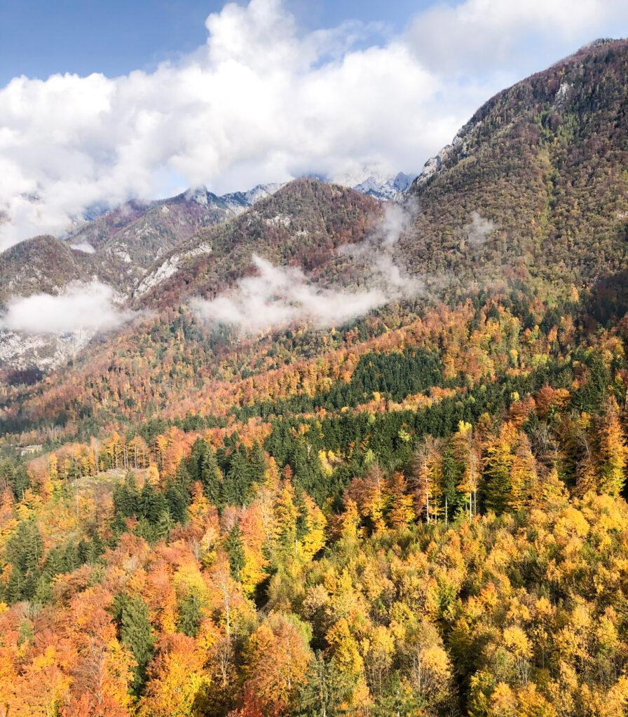 Velika planina Central Slovenia Region Slovenia Europe