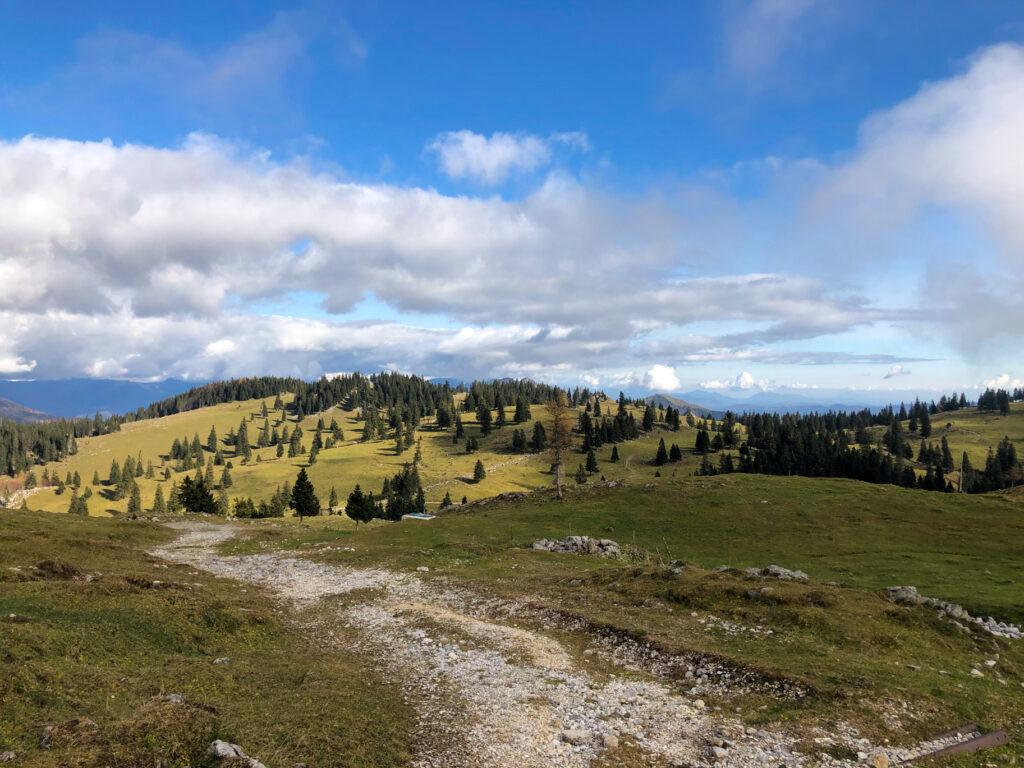 Velika planina Slovenia Europe